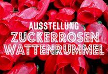 KUNST ... HIER UND JETZT // 2015 // DAS KUNSTFEST IN BRAUNSCHWEIG UND DER REGION